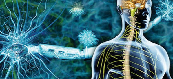 Despre api-fito-terapie în scleroza multiplă. Pacienții cu SM au șanse pentru o viață normală