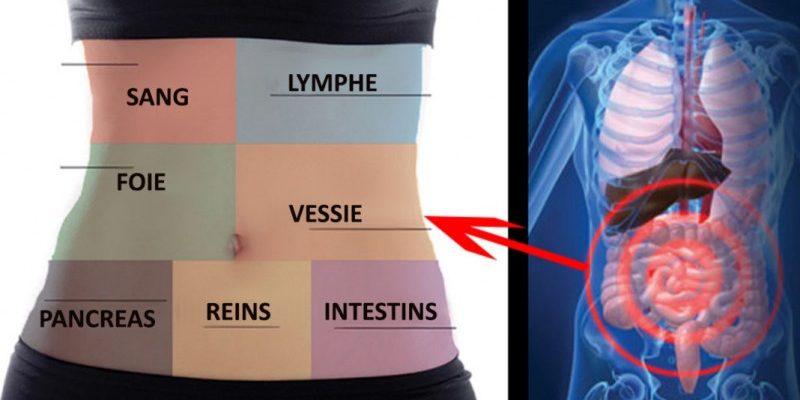 Cum să detoxifiați fiecare organ pentru a nu mai fi niciodată bolnav/ă sau obosit/ă
